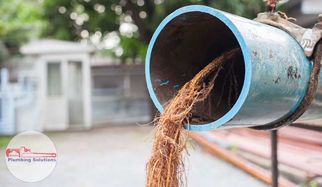 Alamo Plumbing Solutions -drain-clog-